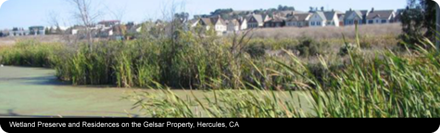 Wetland Preserve and Residences on the Gelsar Property, Hercules, CA